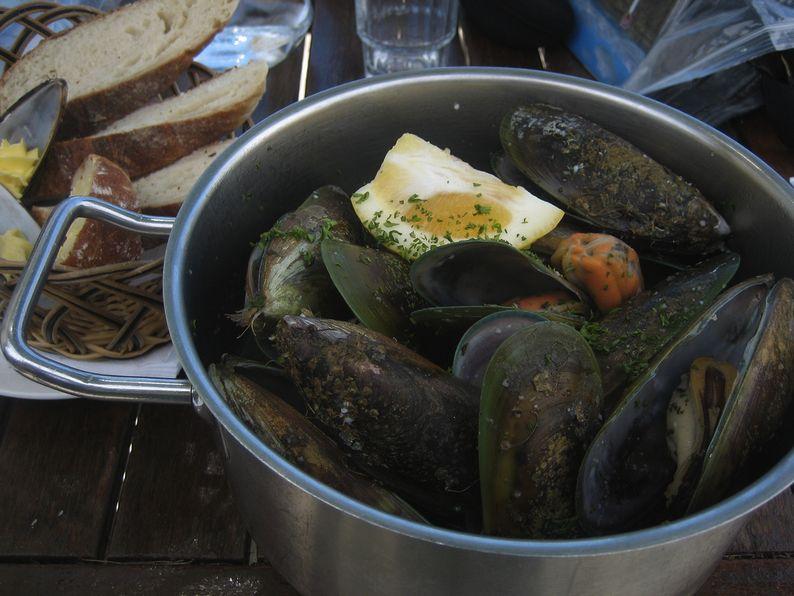 North Island Mussels Coromandel