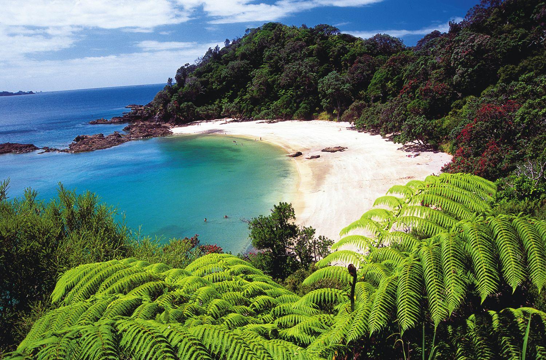 Travel Tips North Island New Zealand